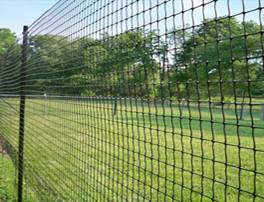 Garden Mesh deer fence Hebei Hengsu Plastic Netting Co Ltd